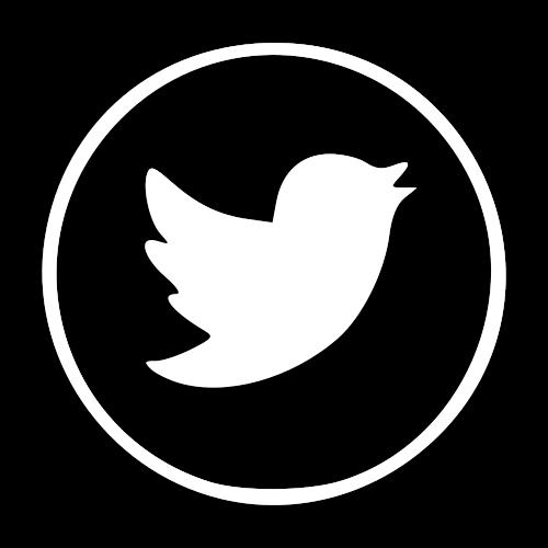 logo twitter blanco png